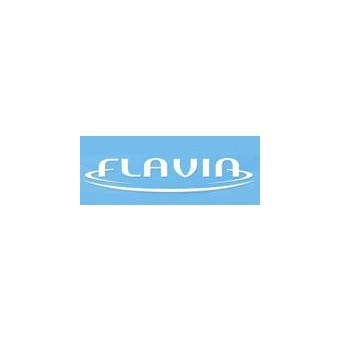 Гарантийный ремонт Flavia